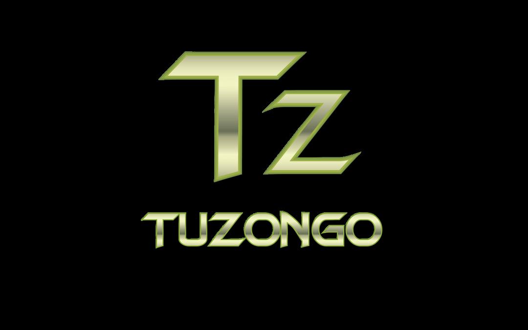 Tuzongo Web Design